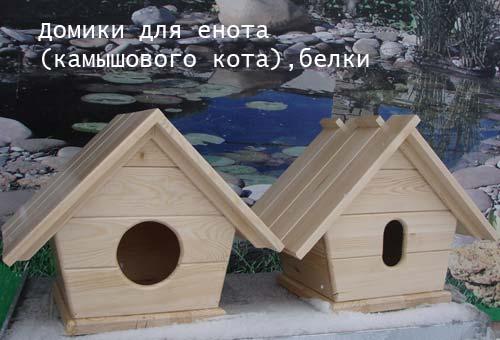 dom_enot_belka